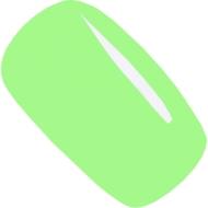 geellakk Jannet color 107 sping green