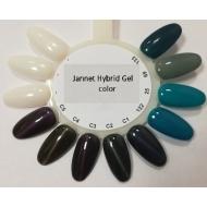 Näidis kassisilma geellakid Jannet Hybrid Gel Color Cat Eye