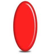 geelilakka Jannet color 184