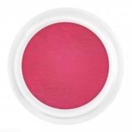 Värviline akrüül 5g Red
