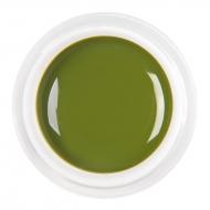 цветной гель olive green nr.49