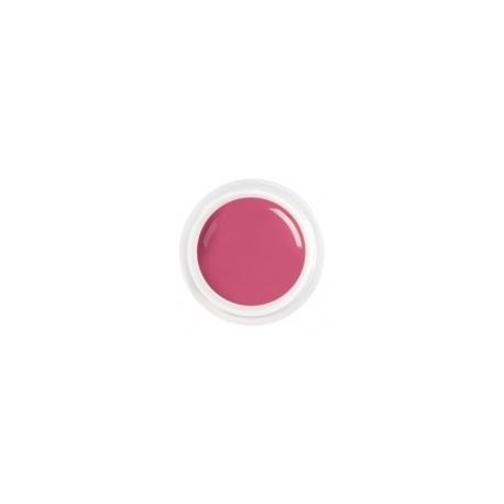 цветной гель dirty pink nr.61
