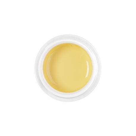 цветной гель pastel yellow nr.69