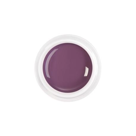 цветной гель purple plum nr.79