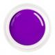 цветной гель Purple shine nr.100