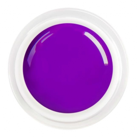 värviline geel Purple shine nr.100